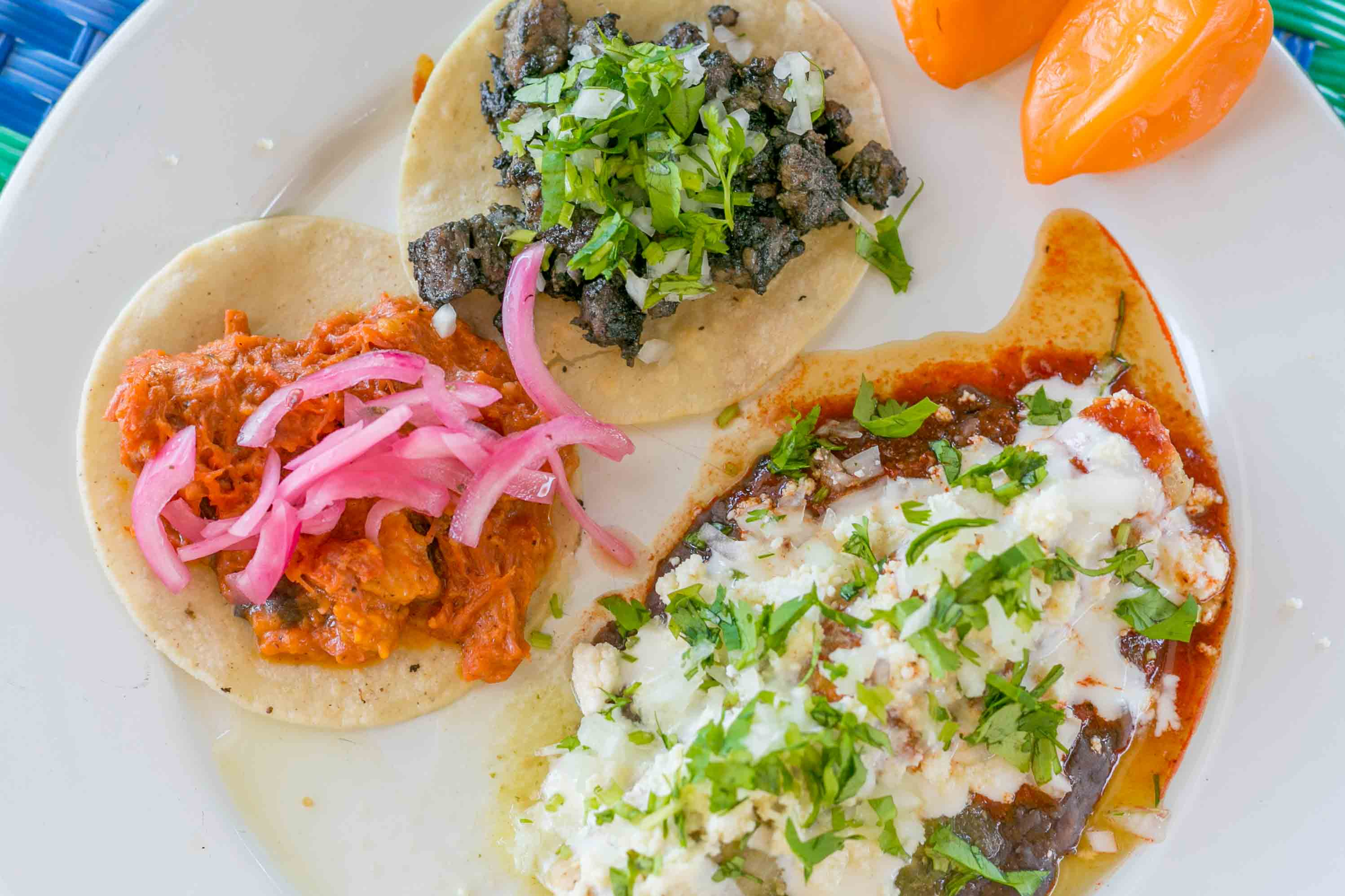 Food Tour in Puerto Vallarta Pitilla + Plate with a Cochinita Pibil Taco, Cochinita Pibil enchilada, and Pok Chuk Taco.