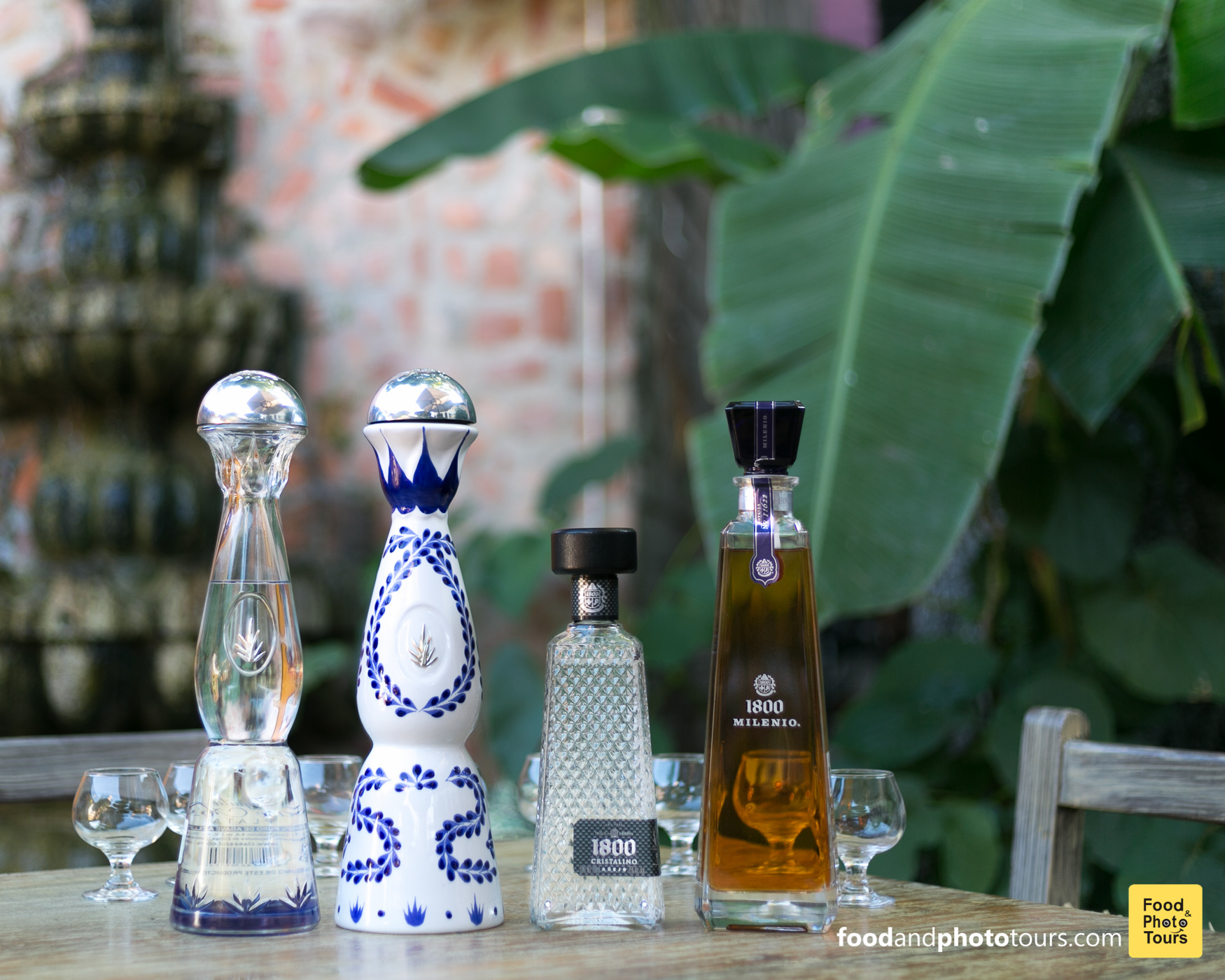 Tequila Tasting in Puerto Vallarta with Star