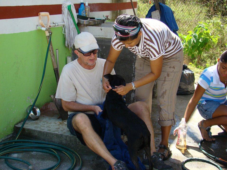 SPCA Puerto Vallarta Volunteering